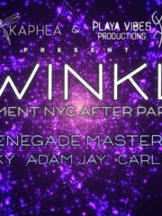 Twinkle – Figment NYC After Party